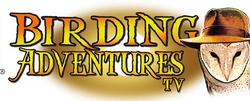Birding Adventures small logo