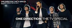 One Direction: The TV Special small logo