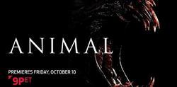Animal small logo