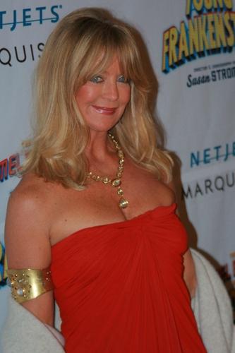 Goldie Hawn Photo