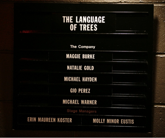 Photo Coverage: Roundabout's THE LANGUAGE OF TREES Opening Night