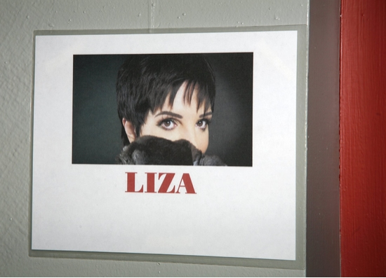 Photo EXCLUSIVE: LIZA'S AT THE PALACE...! After Party