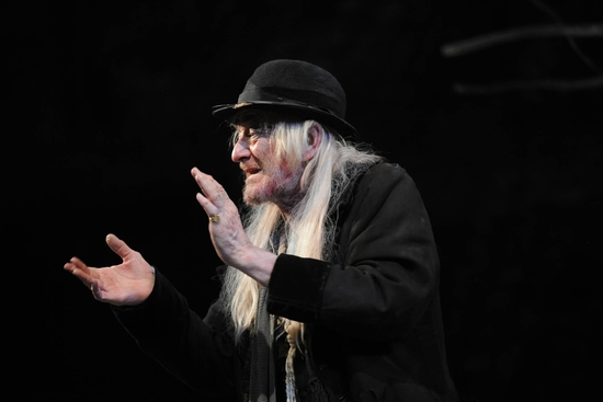Photo Flash: WAITING FOR GODOT at Royal Haymarket