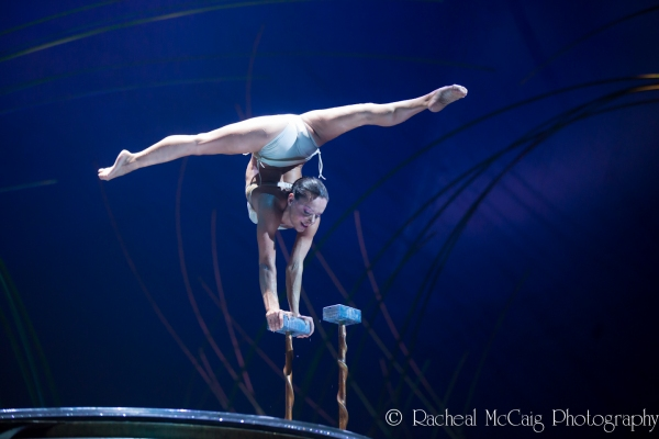 Photo Coverage: Cirque du Soleil's AMALUNA Opens in Toronto!
