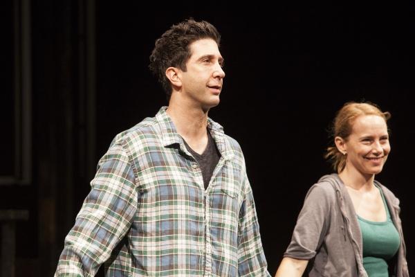 David Schwimmer and Amy Ryan