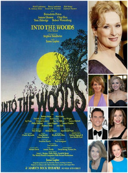 BWW EXCLUSIVE: Starry INTO THE WOODS Reading Cast Revealed; Meryl Streep Expected to Join Film!