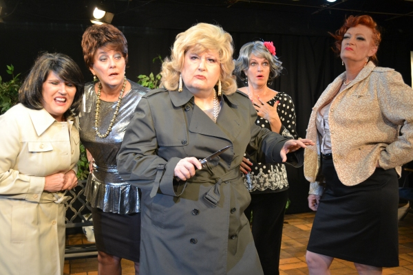 Sandi Morgan, Lisa Schofield, Carolyn Montgomery, Cheryl Tanner, Mary Lou Roschbach at First Look at Theatre Southwest's THE OLDEST PROFESSION