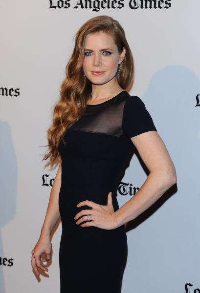 Amy Adams at Amanda Seyfried, Amy Adams & More at Hollywood Film Awards Gala