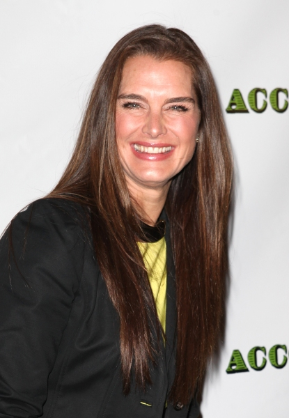 Brooke Shields at DEAD ACCOUNTS - Red Carpet Theatre Arrivals
