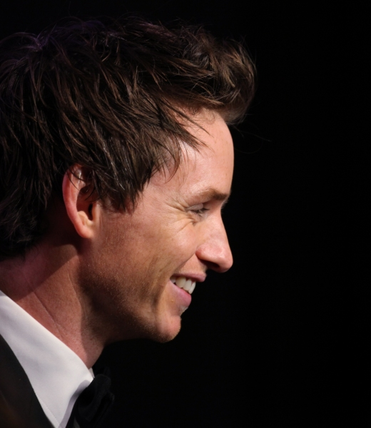 In The Spotlight Series: Eddie Redmayne