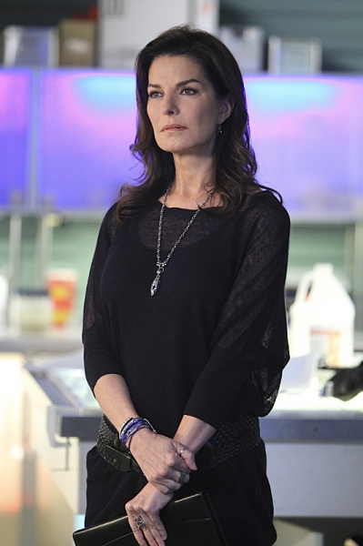 Photo Flash: First Look - CSI: NY's Winter Return, 'Command+P,' Airing 1/4