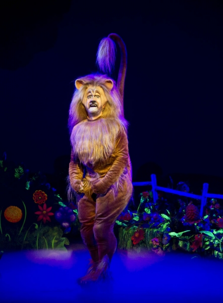 Photo Flash: First Look at Danielle Wade, Lee MacDougall and More in Toronto's North American Premiere of THE WIZARD OF OZ