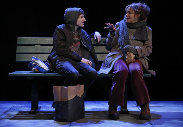 Photo Flash: First Look at Deirdre O'Connell and More in The Flea's THE VANDAL World Premiere