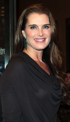 ARMY WIVES Recruits Brooke Shields for Season 7