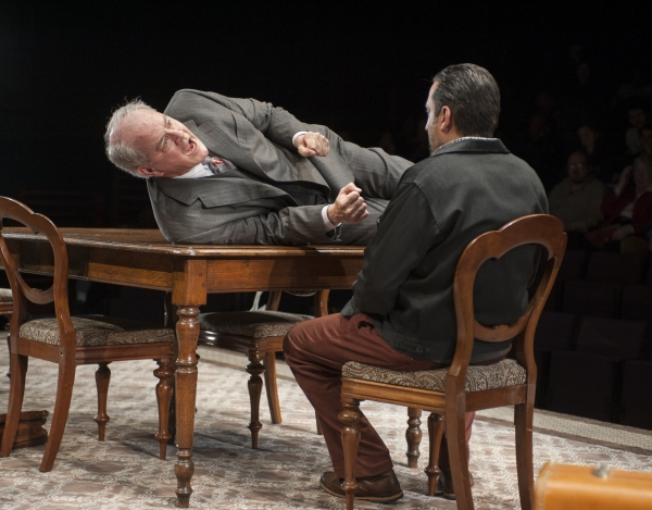 Photo Flash: First Look at Steppenwolf Theatre's THE BIRTHDAY PARTY