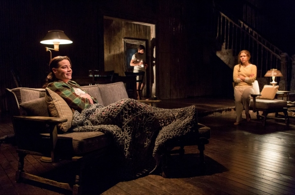 Danielle Skraastad as D.K. (Delia) Eriksen, David Conrad as Professor August Howe and Photo