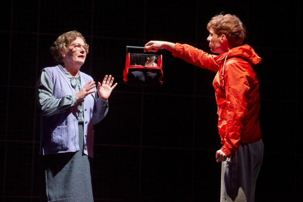 TILLY TREMAYNE as Mrs Alexander, LUKE TREADAWAY as Christpher Boone