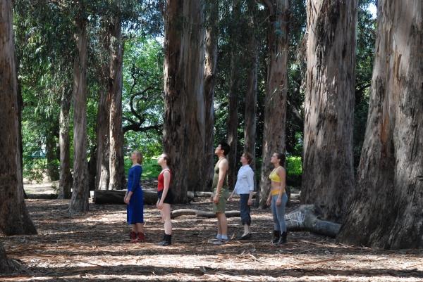 Photos: UC Berkeley Presents 4 New Dance Works in 'Berkeley Dance Project 2013: Aperture'; Thru 4/28