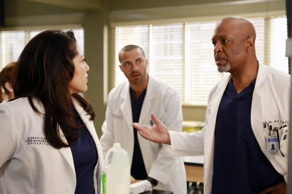 Sara Ramirez, Jesse Williams, James Pickens JR.