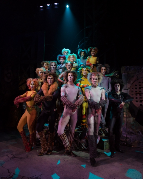 Photo Flash: First Look at Charles Azulay, Ma-Anne Dionisio & More in the Canadian Production of CATS