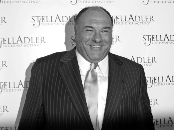 James Gandolfini at the 2013 STELLA BY STARLIGHT Gala