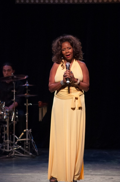 Photos: Tonya Pinkins and More at Shakespeare & Company's BROADWAY IN THE BERKSHIRES Gala