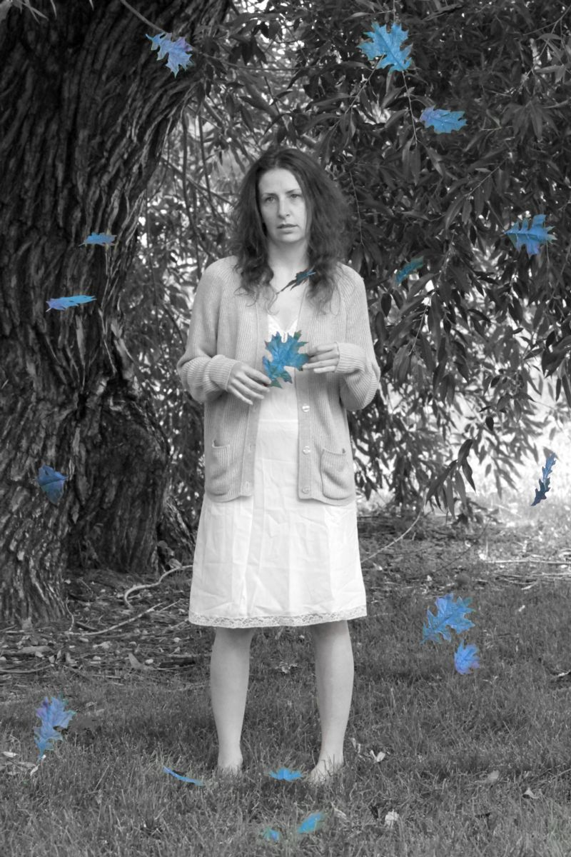 Edge Theatre Company's THE HOUSE OF BLUE LEAVES to Begin Performances Tomorrow