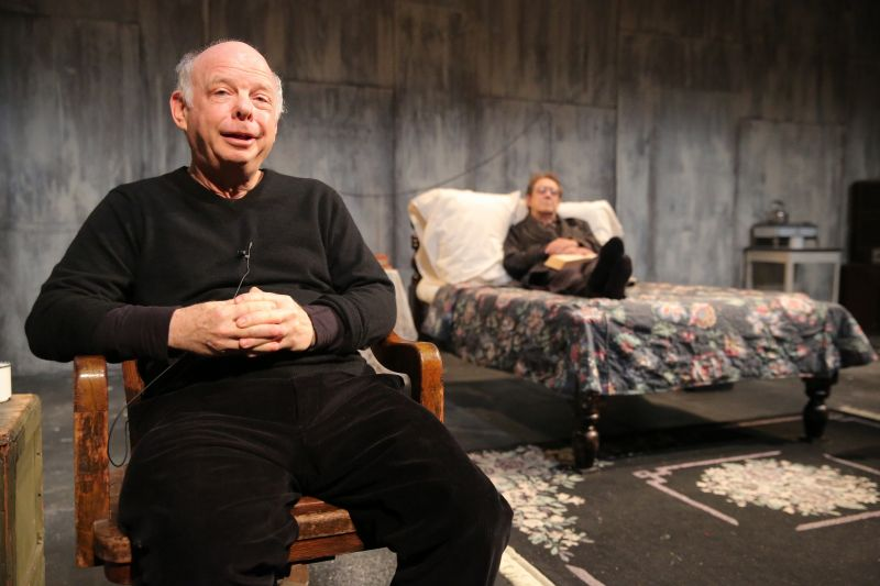 Review - Wallace Shawn's 'The Designated Mourner' Intrigues at The Public