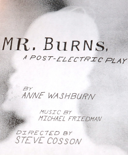 Photo Coverage: Meet the Company of Playwrights Horizons' MR. BURNS, A POST-ELECTRIC PLAY