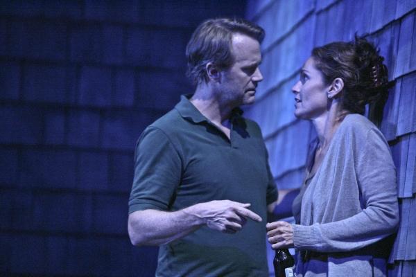 Lee Tergesen and Amy Brenneman