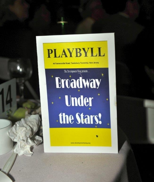 Photos: The Development Wing Hosts 4th Annual BROADWAY UNDER THE STARS Gala
