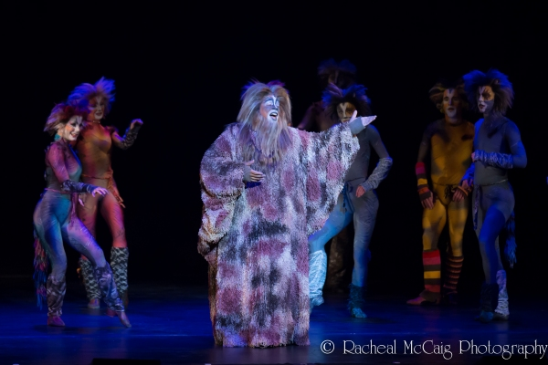 Charles Azulay and the Canadian Company of CATS Photo