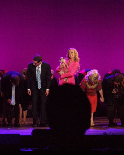 The cast of LEGALLY BLONDE at curtain call.