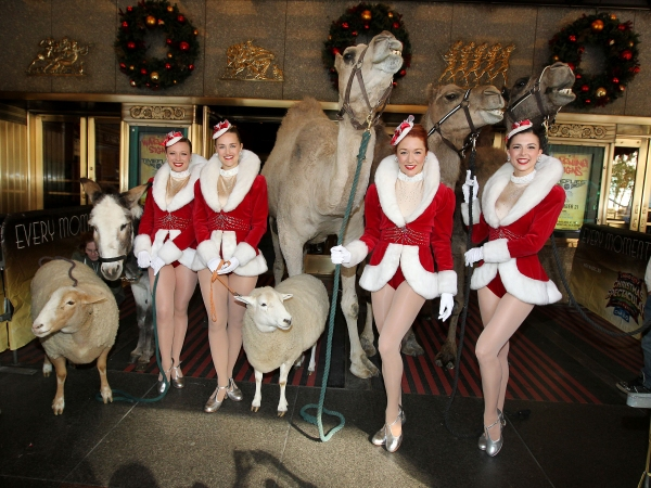 Sarah Staker, Katie Russell, Jessica Osborne and Sierra Ring welcome the stars of the Living Nativity to their first day of rehearsals for the Radio City Christmas Spectacular.
