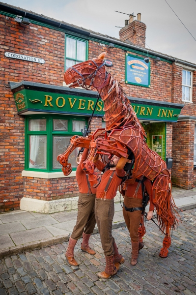 Joey, star of the National Theatre's production War Horse, trots onto the Coronation Street cobbles during his recent trip to the city to celebrate Manchester Tourism Awards.