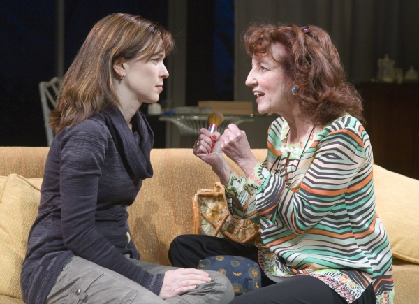BWW Reviews: The Alley Theatre's OTHER DESERT CITIES is both Fun and Dysfunctional