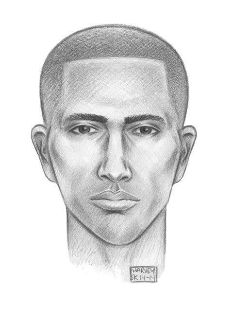 Sketch of Theater Journalist Randy Gener's Alleged Attacker Released