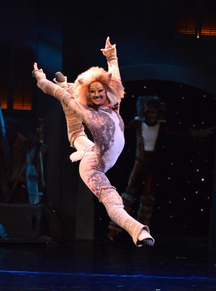 Photo Flash: First Look - CATS Opens Tonight at Beef & Boards Dinner Theatre