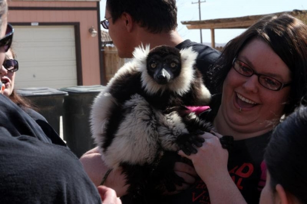 Photo Flash: Cast of EVIL DEAD THE MUSICAL Plays with Animals at Private Moapa Sanctuary