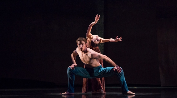 BWW Reviews: Houston Ballet's THE YOUNG PERSON'S GUIDE TO THE ORCHESTRA is Captivating