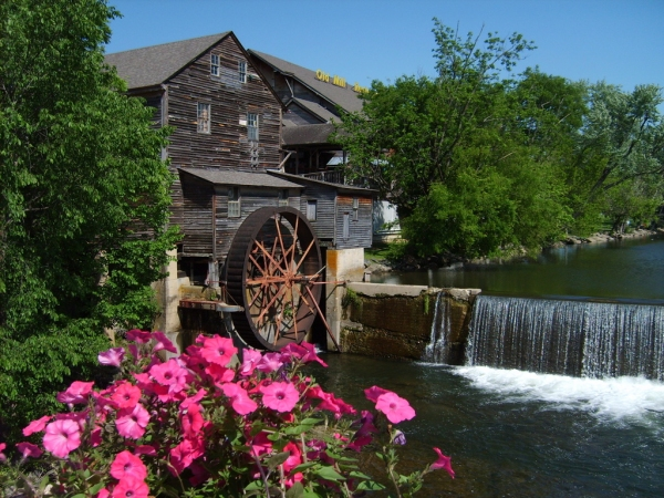 Bww reviews dogwoods and azaleas spell springtime in for Mountain flower cabin pigeon forge