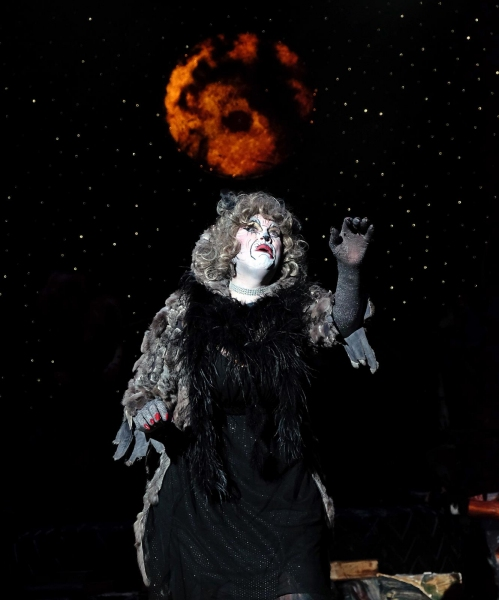 Photo Flash: First Look at San Diego Musical Theatre's CATS