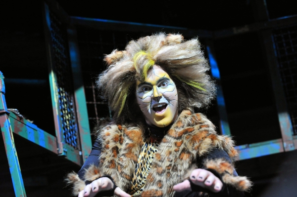 photo flash first look at heidi kettenring matthew r jones and more in marriott theatre 39 s cats. Black Bedroom Furniture Sets. Home Design Ideas