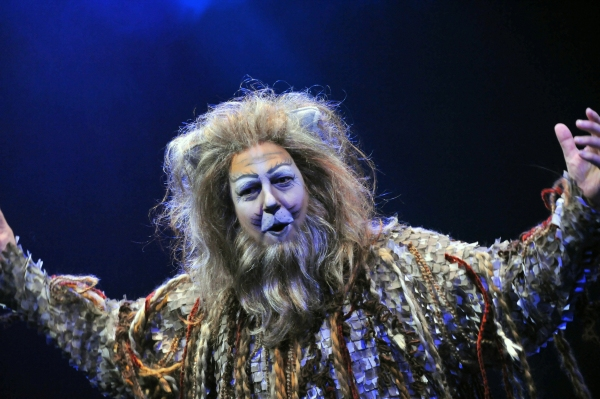Photo Flash: First Look at Heidi Kettenring, Matthew R. Jones and More in Marriott Theatre's CATS