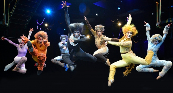 The cast of CATS at the Marriott Theatre
