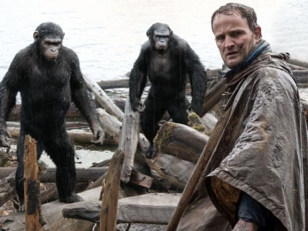 Photo Flash: First Look - All-New Images from DAWN OF THE PLANET OF THE APES