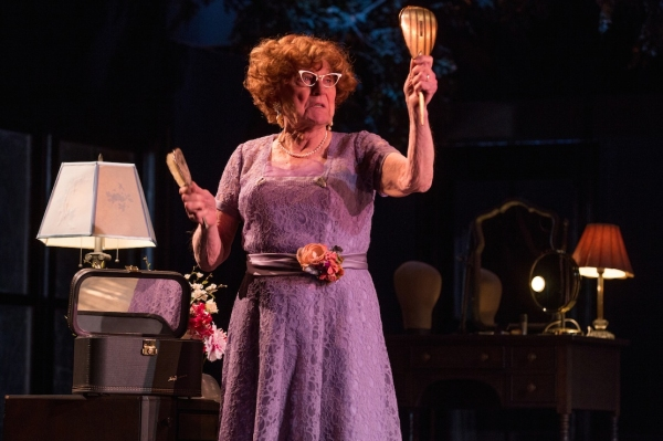 Photo Flash: First Look at Patrick Page & More in MTC's CASA VALENTINA