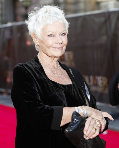 Photo Coverage: OLIVIERS 2014 - Red Carpet Part 2, Davis, Dench, Freeman, Hiddlestone and More!