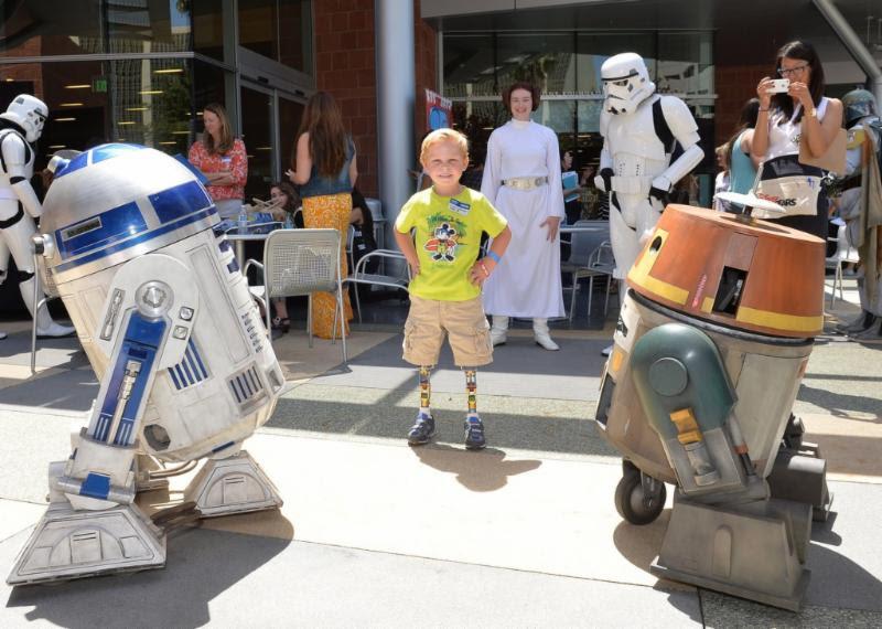 Fans Celebrate 'Star Wars Day' Worldwide