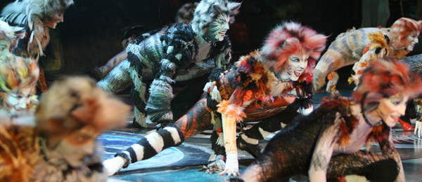 30 Days Of The 2014 Tony Awards: Day #22 - CATS